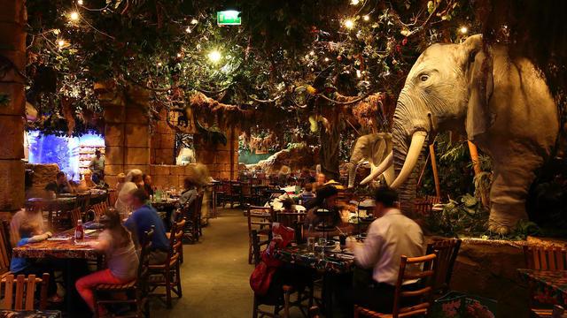 biletydisneyland_rainforest-cafe
